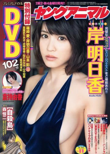 岸明日香 倉持由香 [Young Animal] 2014年No.11 写真杂志